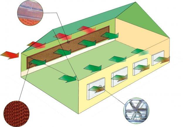 Hệ thống thông gió cooling pad