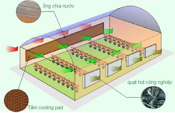 hệ thống thông gió cooling pad, he thong thong gio cooling pad, cooling pad, hệ thống thông gió, thông gió, he thong thong gio, thong gio, thông gió cooling pad, thong gio cooling pad,