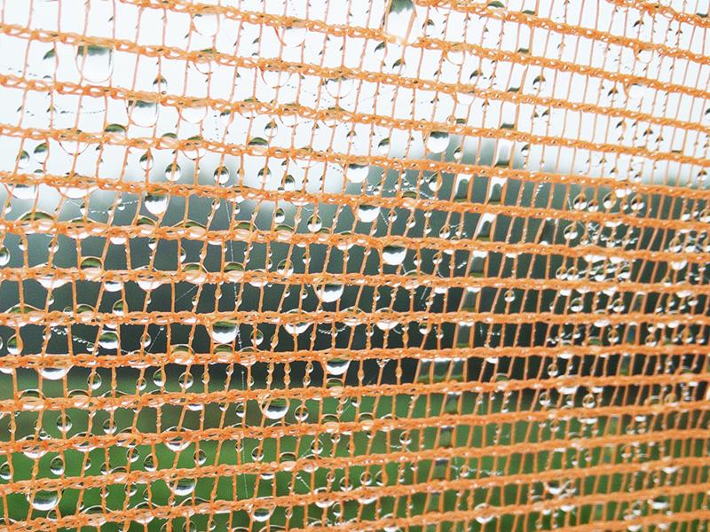 Nước được lưới tre mắt cáo giữ lại quanh thân tháp WarkaWater